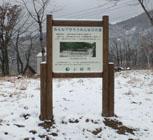 大島区菖蒲の写真